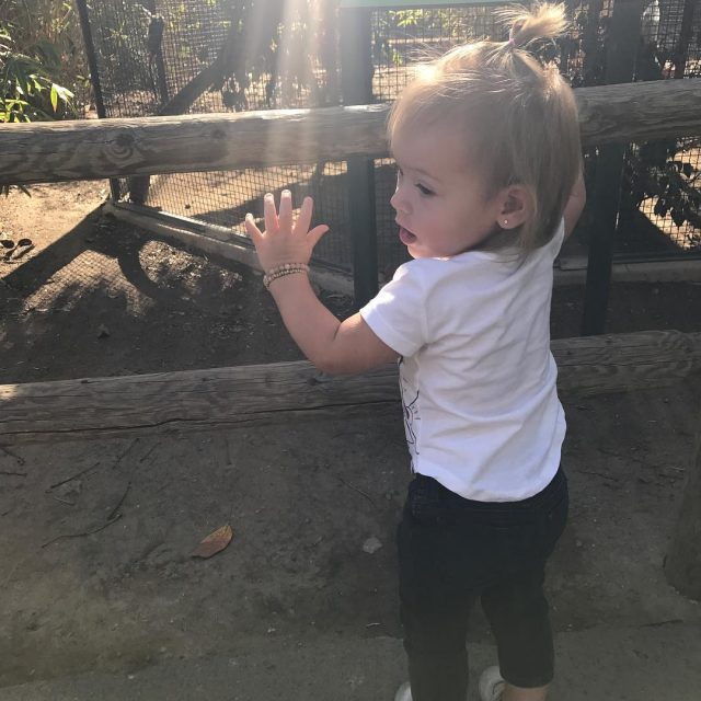 A zoo kind of day with my little